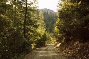 klamath national forest