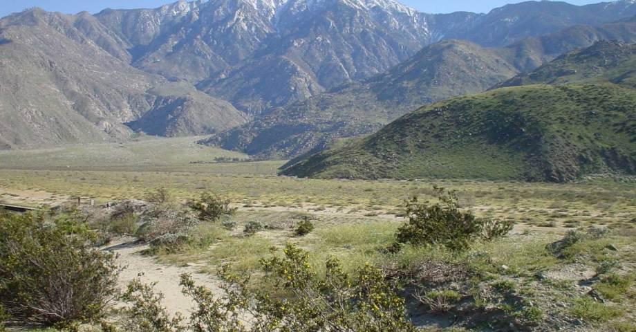 Santa Rosa and San Jacinto Mountains National Monument dog info