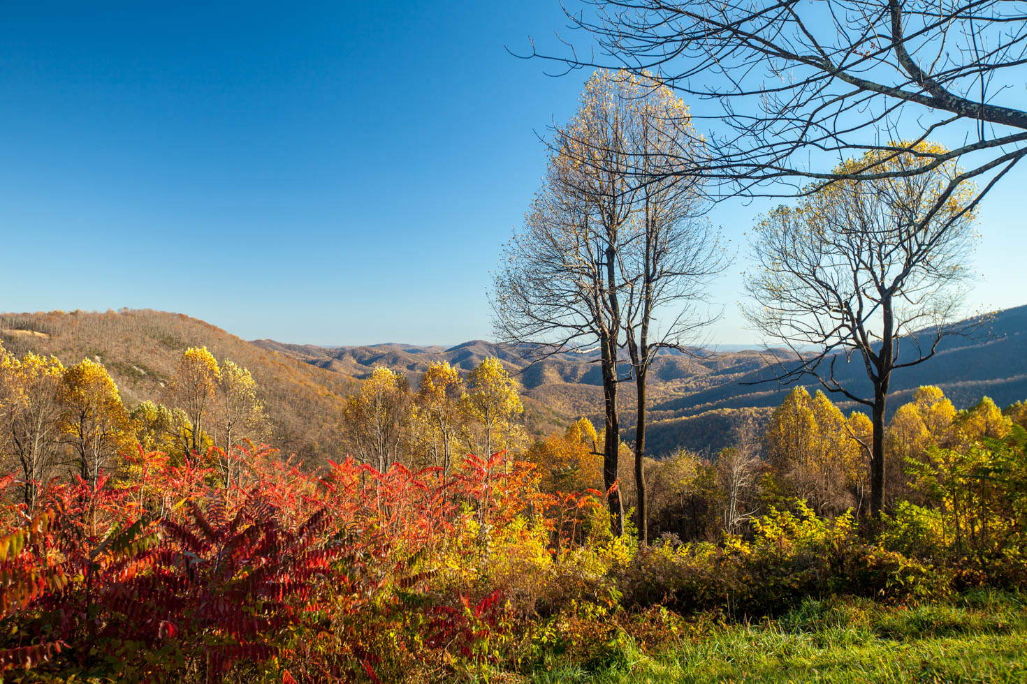 Skyline Drive, Shenandoah National Park, photo by Vezzani Photography