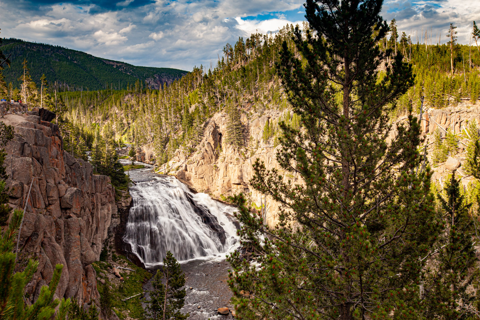 Gibbons Falls, Yellowstone National Park, Photo Credit: Vezzani Photography