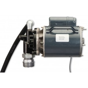 Electric Oil Pumps