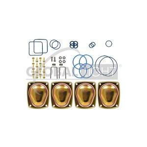 Wayne® iMeter® Aggressive Fuels Service Kit