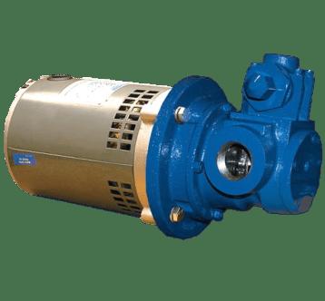 """Gorman-Rupp GMC1DE3 1"""" Internal Gear Positive Displacement Pump"""