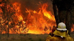 Australia Declare State Of Emergency Due To 'Catastrophic' Bushfires