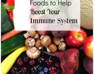 Foods That Boost The Immune System