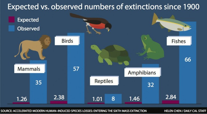 Sixth mass extinction