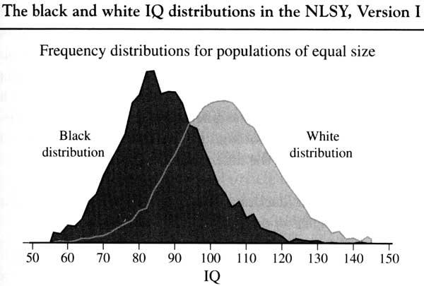 Image result for black vs white iq graph