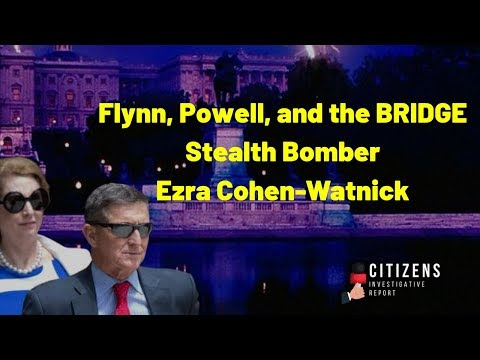 Powell, Flynn, and the BRIDGE – Ezra Cohen-Watnick THE BRIDGE
