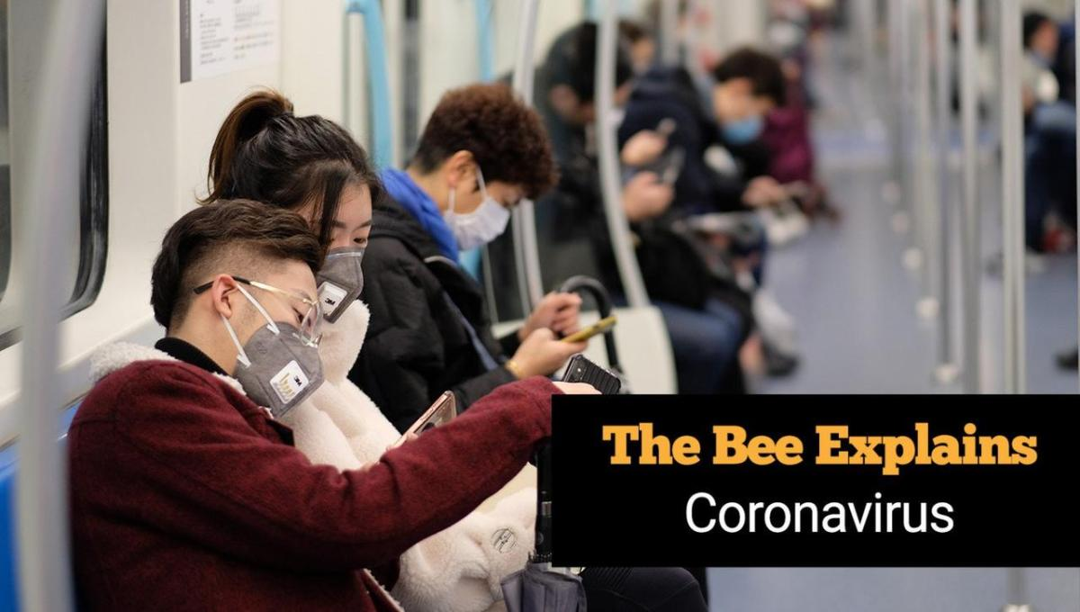 Coronavirus Explained: Everything You Wanted To Know But Were Afraid To Lift Your Mask To Ask