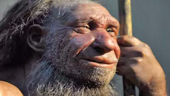 Why did the Neanderthal human species become extinct?   Leader