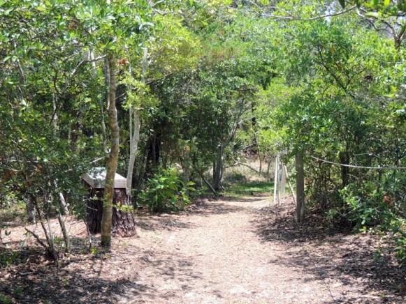 Trail14016