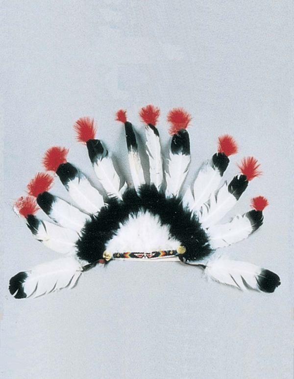 12 Feather War Bonnet
