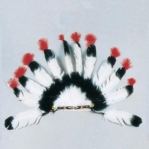 12 Feather War Bonnet
