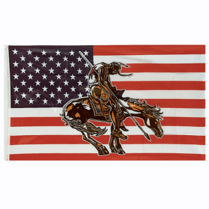 American Flag with End Of The Trail Indian Print