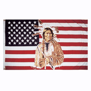 Native American USA Flag