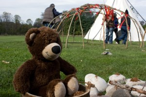 teddy and tipi