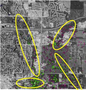 Image 4: Identification of Coyote Corridors