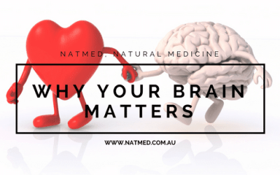 Why Your Brain Matters