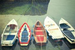 boats-of-colour