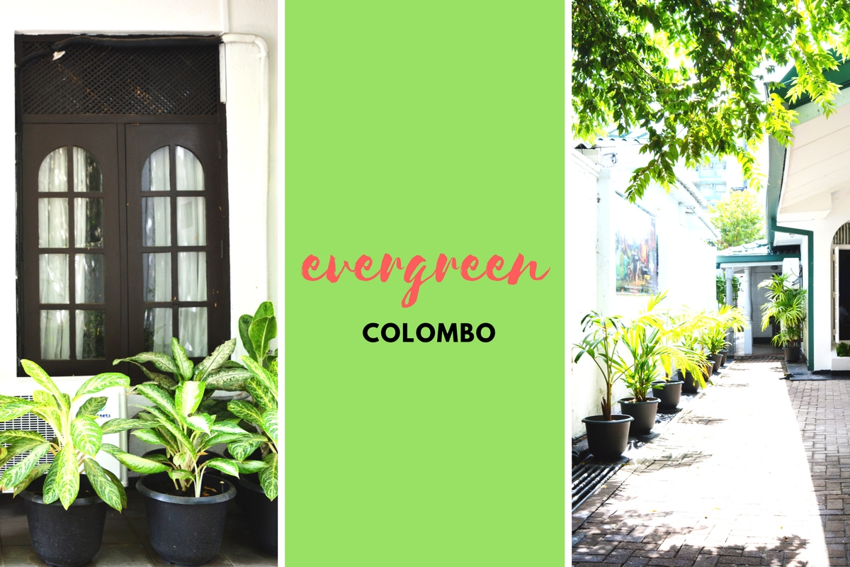 Review: Evergreen Colombo