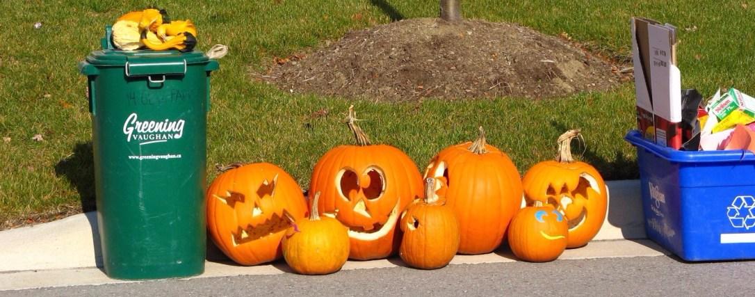pumpkins_after_halloween