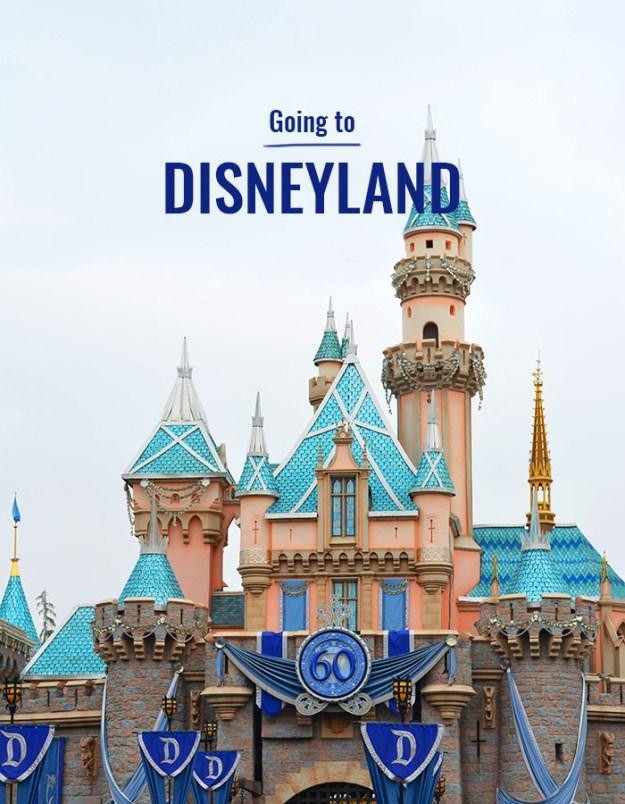 Going to Disneyland // Nattie on the Road