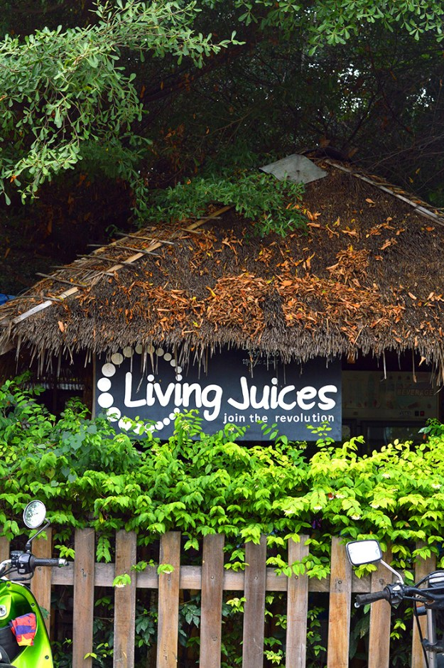 Living Juices - Koh Tao Thailand