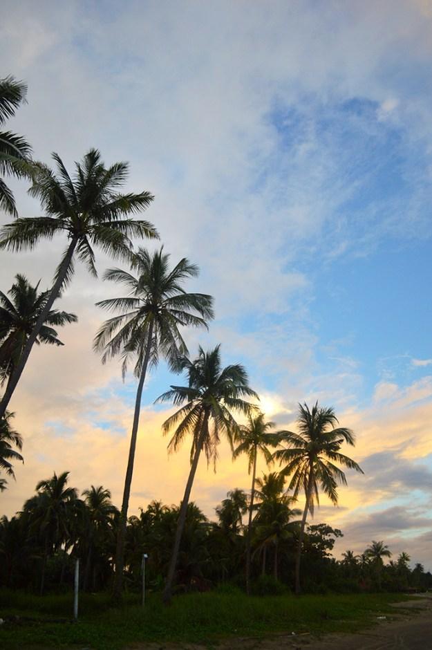 coastal Myanmar