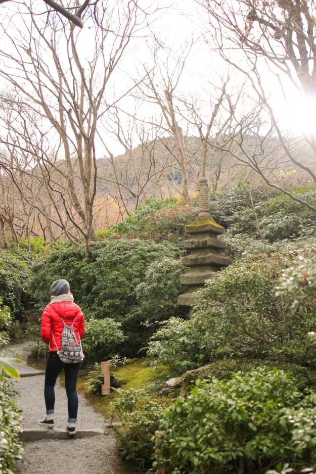 Japanese Tea Gardens, Kyoto