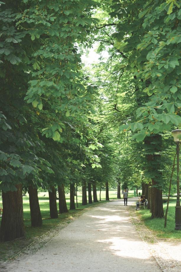 beautiful green spaces in Slovenia