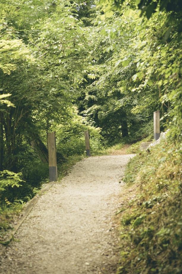 Hiking at Lake Bled