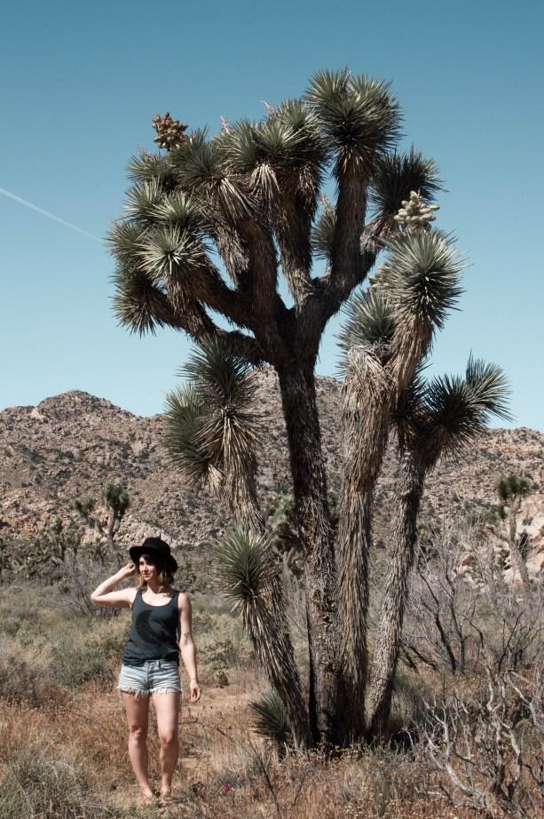Hiking around Joshua Tree