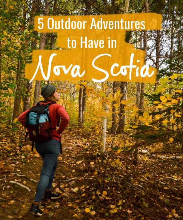 5 outdoor adventures to have in Nova Scotia