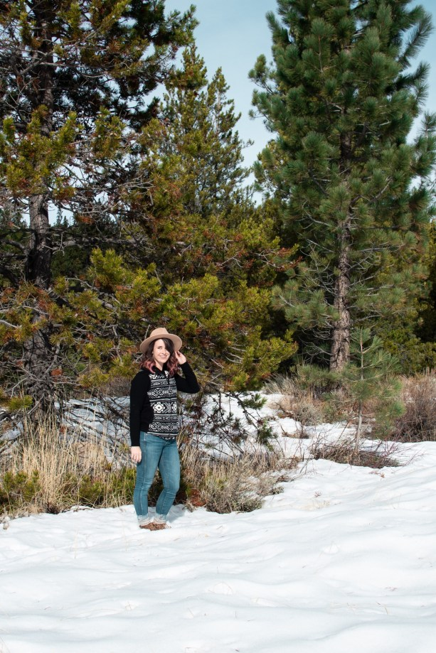 Get those forest vibes in South Lake Tahoe in Winter