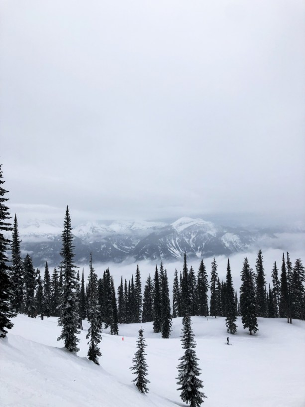 Revelstoke - winter road trip