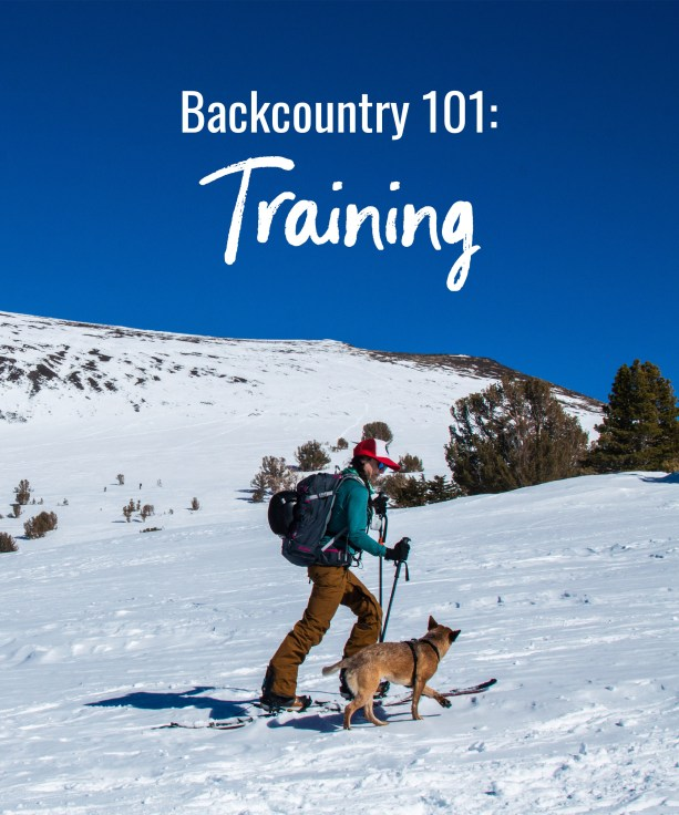 Backcountry 101: Training