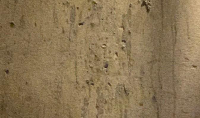 unkept wall