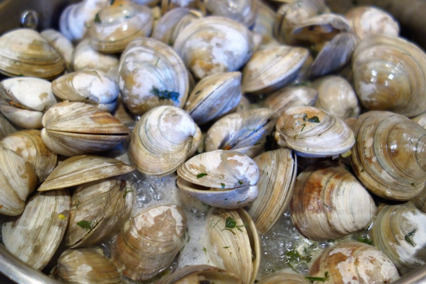 Best Steamed Clams | Clam Recipes | Easy Recipes
