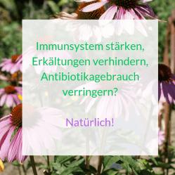Immunsystemnatürlichstärken