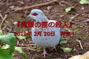 赤い目の鳩
