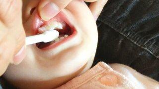 嫌がる子の歯磨きの様子