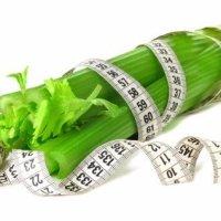 Сельдерей - овощ для похудения