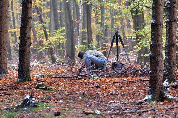 Erich Obster im verscheiten, herbstlichen Wald