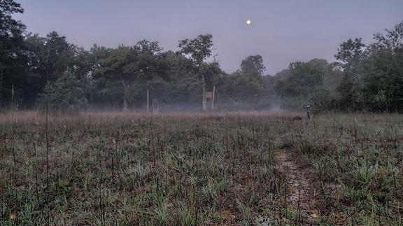 Gespenstische Stimmung vor Sonnenaufgang