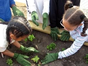 jardineria_escolar_2