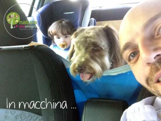 cane-macchina
