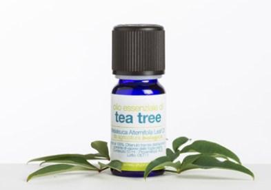 O.E. Tea Tree