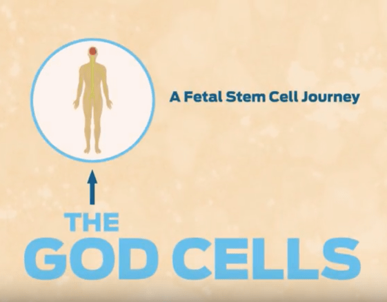 The God Cells