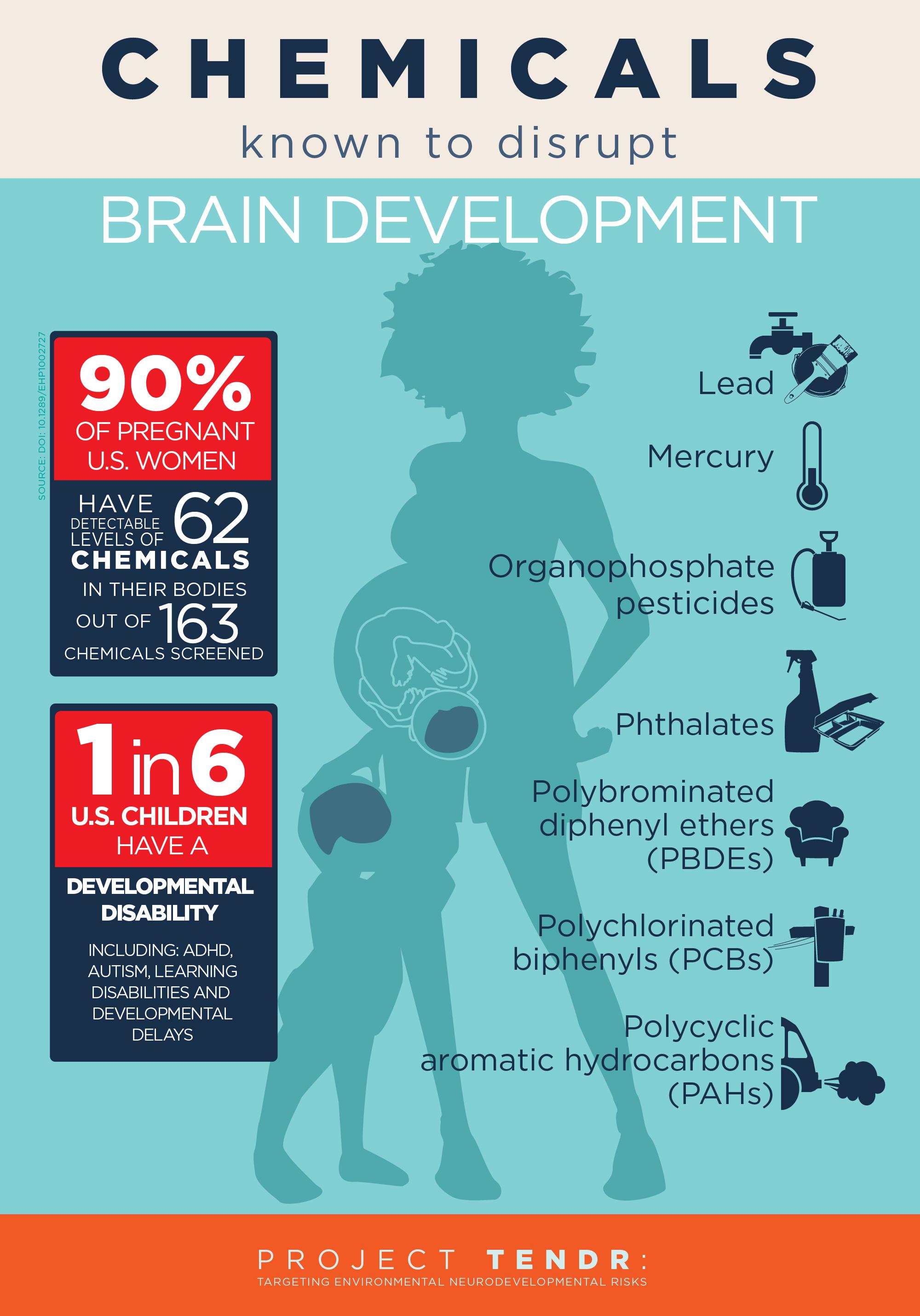 Environmental Toxins U0026 ADHD