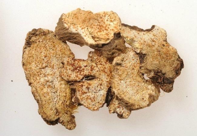 Dry Rhizome Of Atractylodis